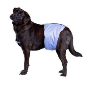 Bandeau anti pipi couche lavable chiot petit chien for Pipi de chien sur carrelage